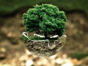 éco-conception et environnement